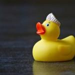 La méthode du canard en plastique