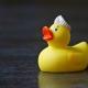 Méthode canard en plastique