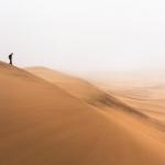 Quand t'es dans le désert…